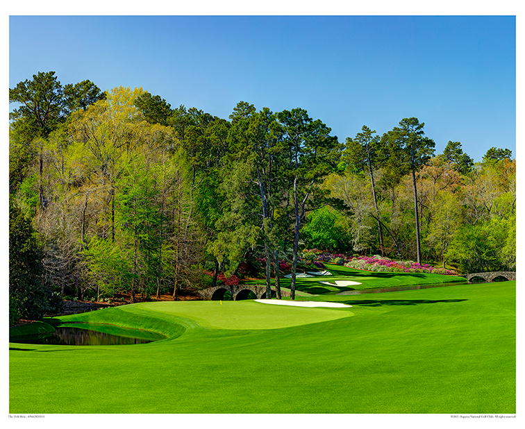 The 11th Hole – White Dogwood